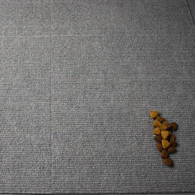 dog food leftover after low-pile carpet test