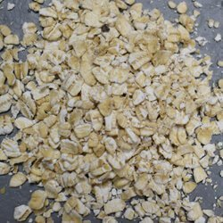 Oats used for vacuum tests